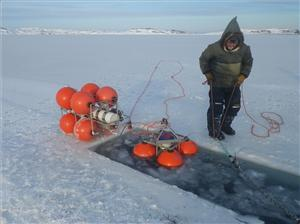 Joey Angnatok preparing ADCP and IPS mooring cages for deployment through the ice.
